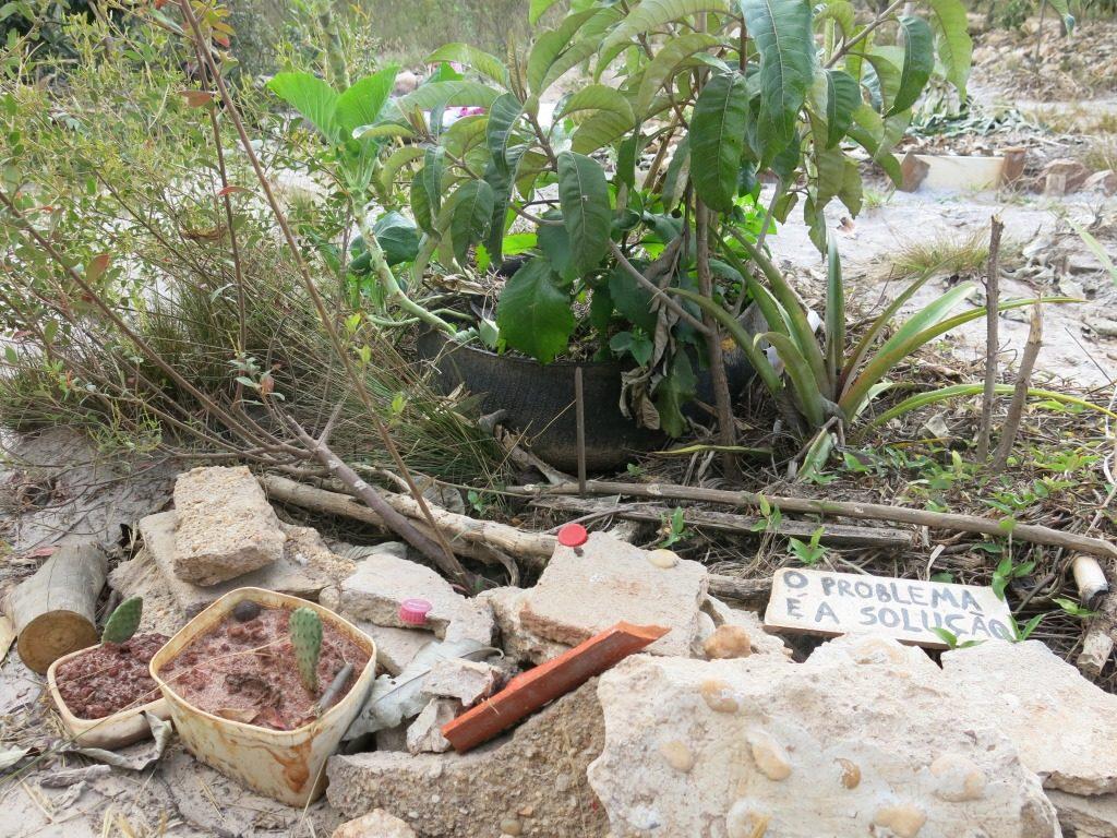 O problema é a solução: vale para o cocô. De vilão a herói. Salvou os astecas de uma crise alimentar.