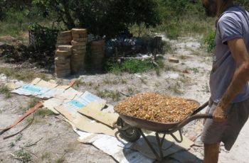 Agricultura Natural e Permacultura Popular