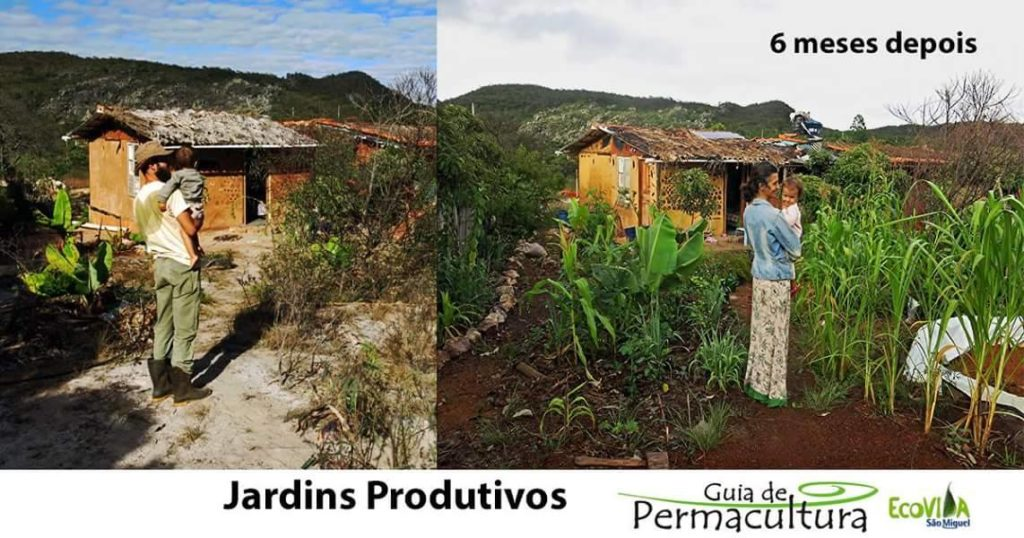 Permacultura e Agricultura Natural Selvagem