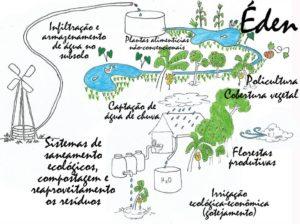 Quintais produtivos, produtos ecológicos, biocosméticos
