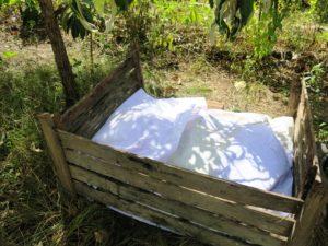 Proteger do Sol os microrganismos