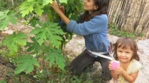 Permacultura como sadhana