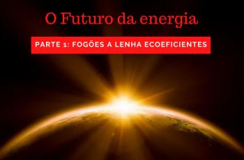 O Futuro da Energia: Autor da própria sobrevivência